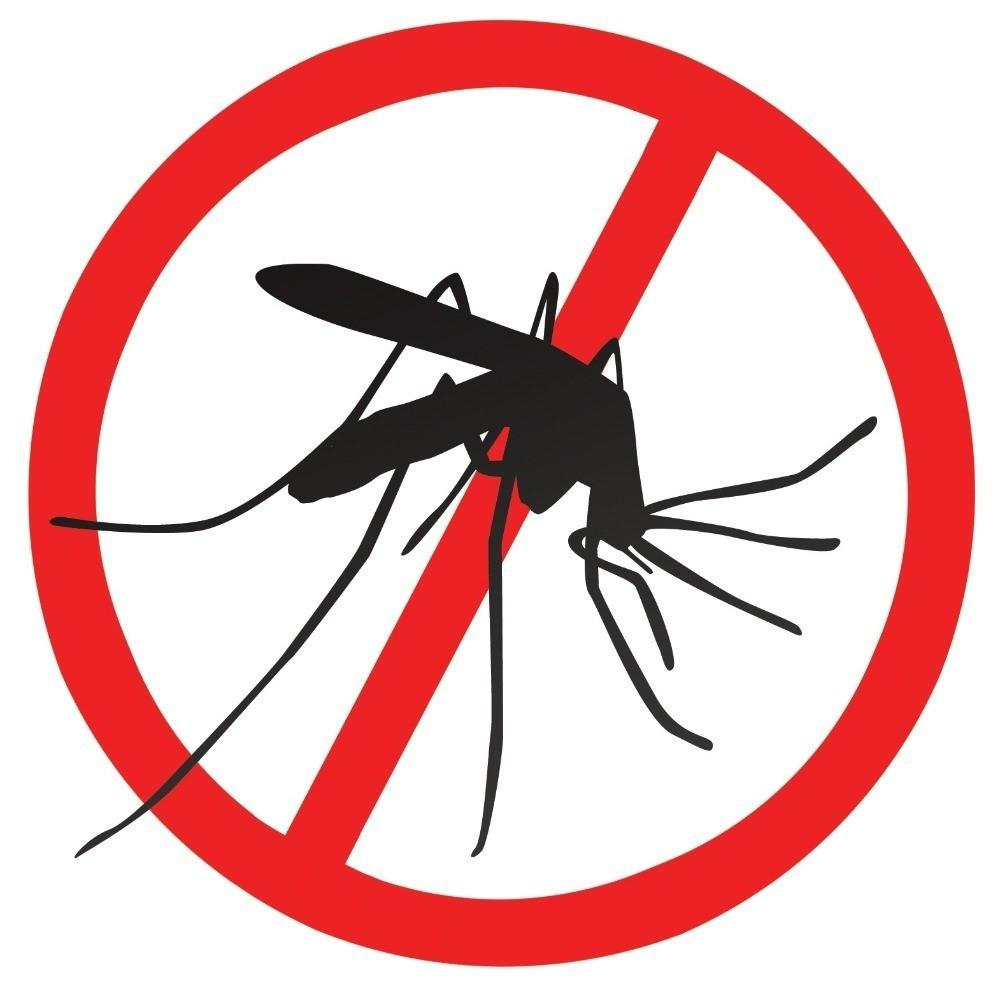 Mosquito Bites and Remedies Facts